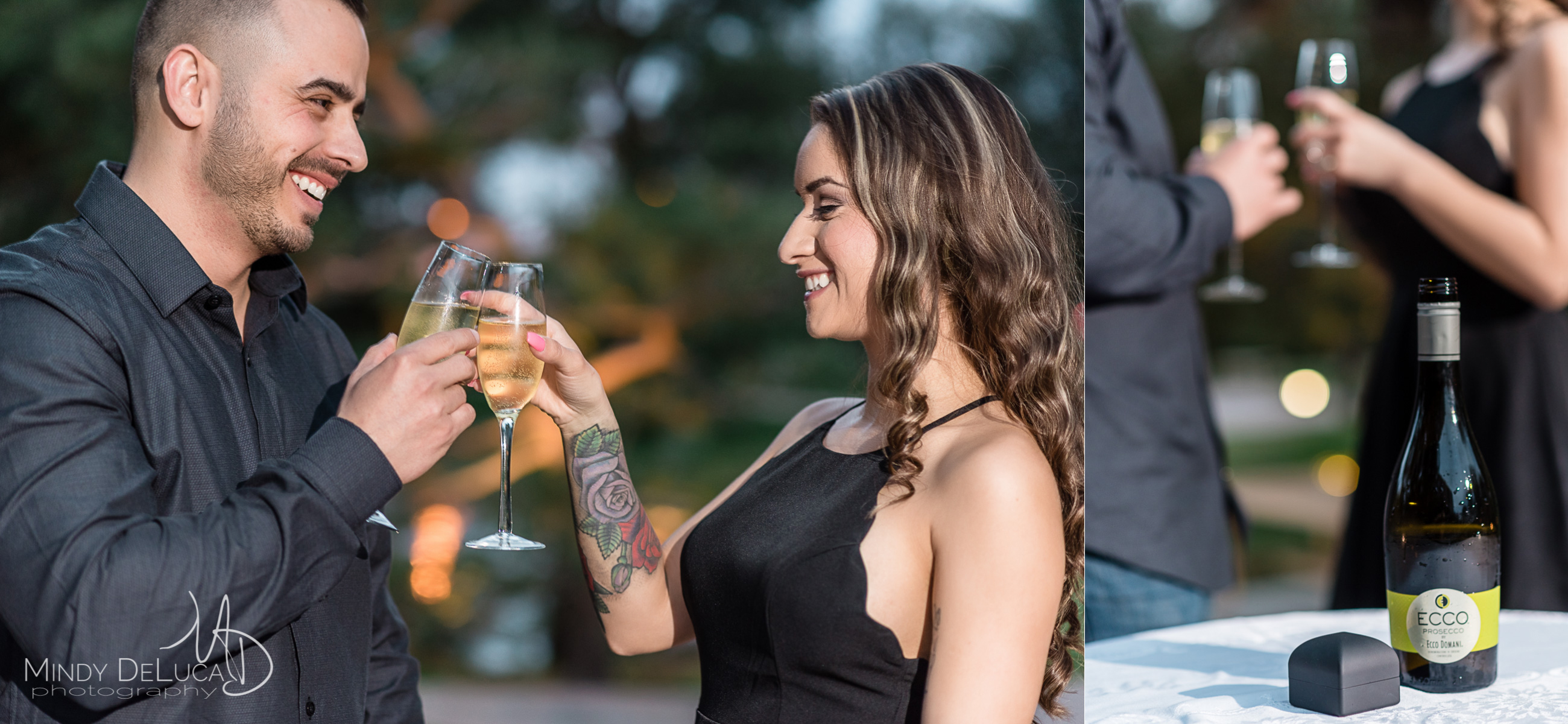 Romantic Engagement Champagne Toast