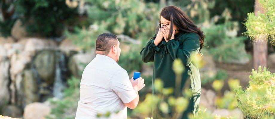 SURPRISE FILLED WEDDING PROPOSAL: Phoenix, AZ Photographer: Juliana + Paul