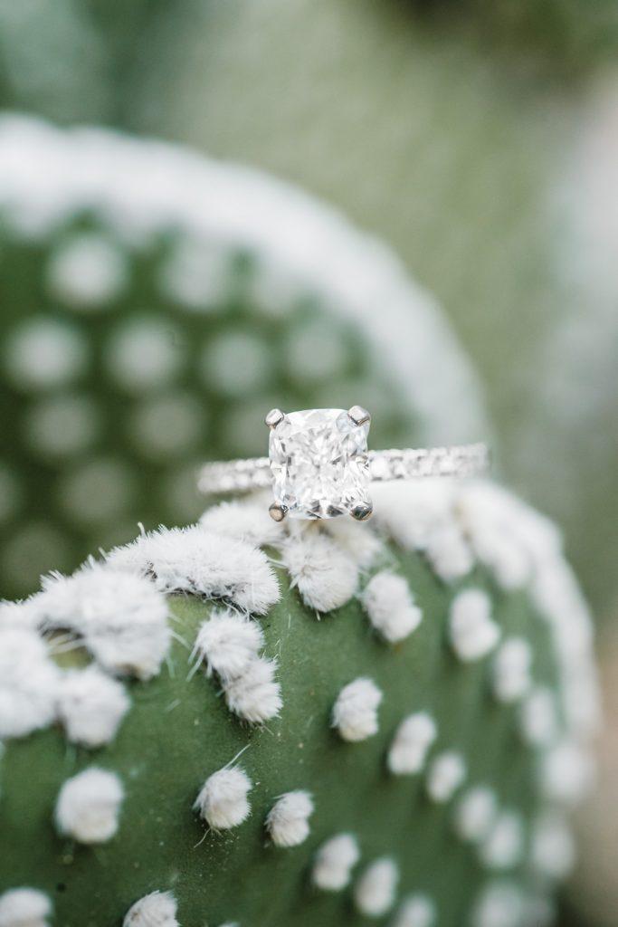 Brilliant engagement ring closeup on fuzzy cactus paddle