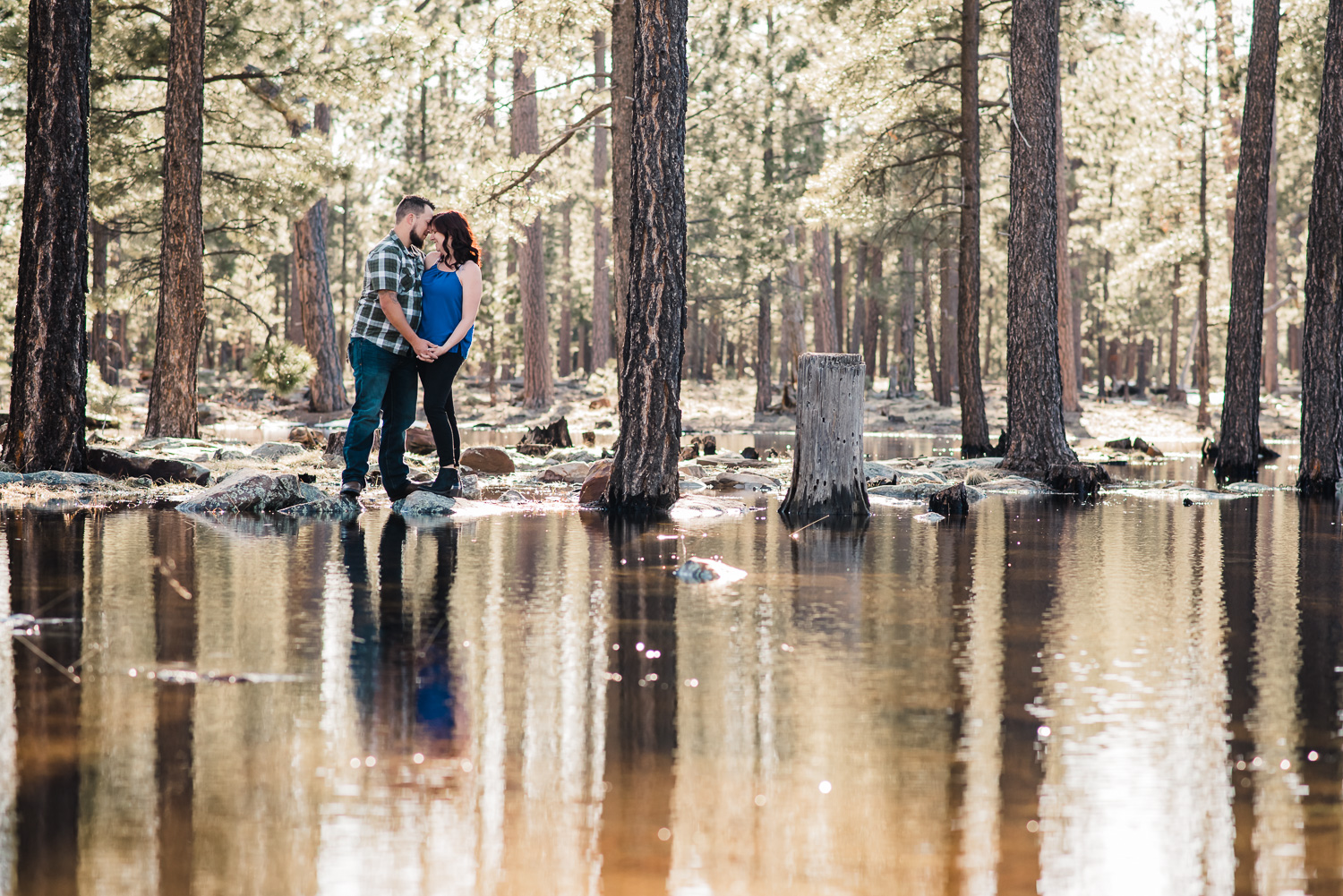 forest lake engagement arizona