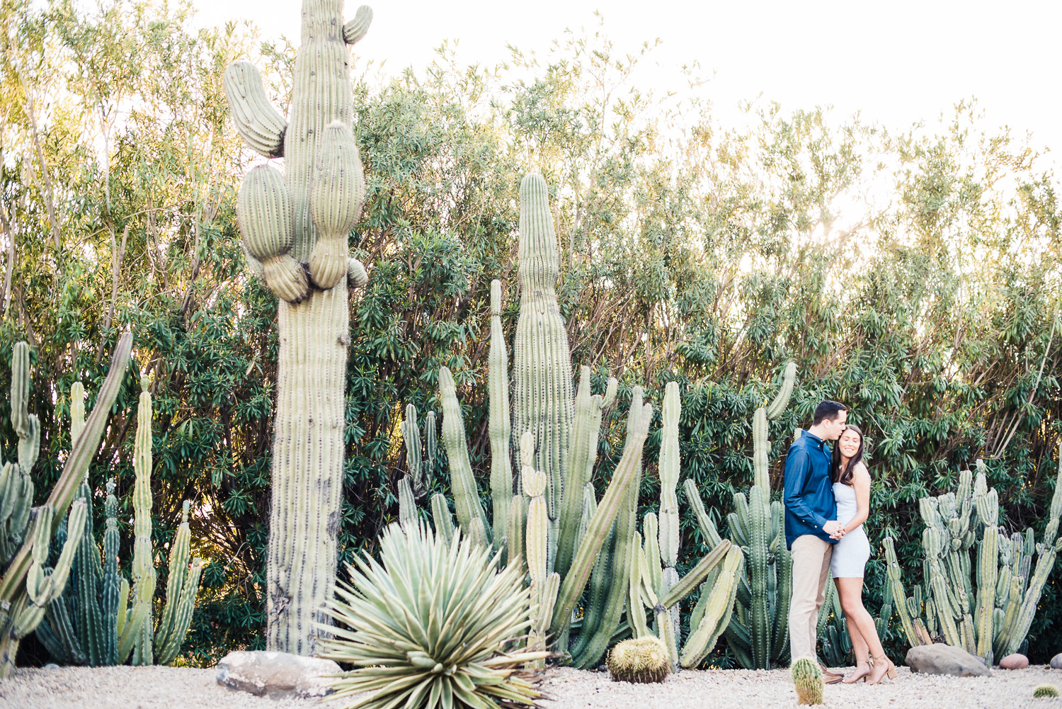 Cactus filled engagement photo