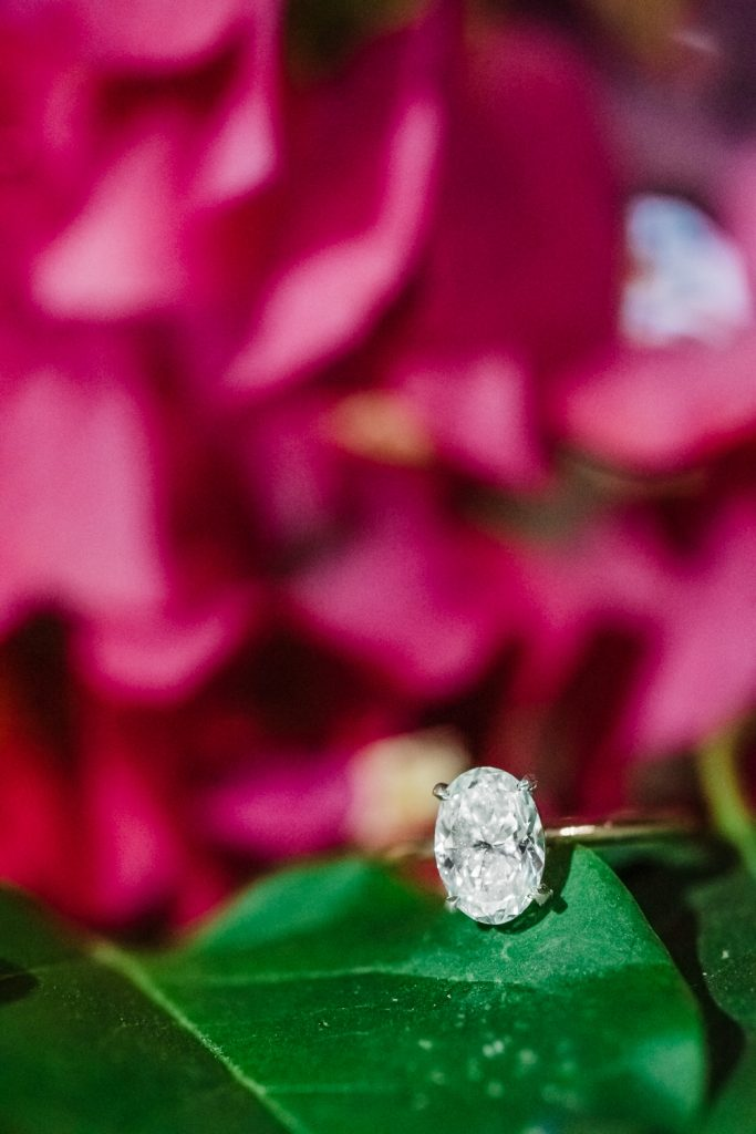 Engagement Ring on bougainvillea