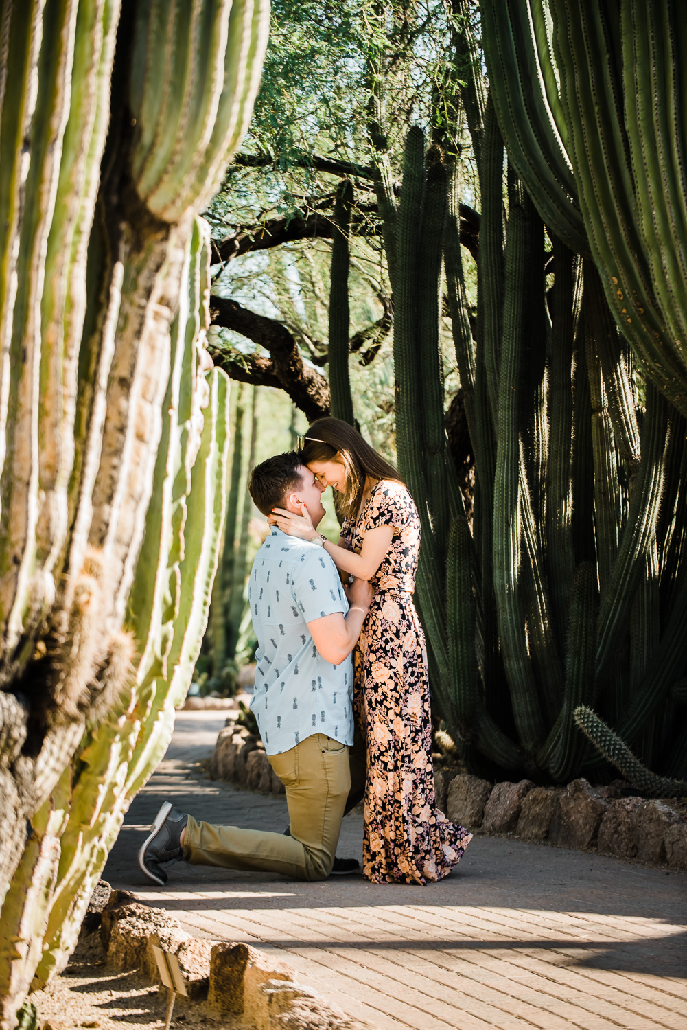Surprise wedding proposal at Desert Botanical Gardens