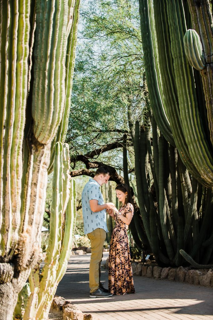 Surprise proposal at Desert Botanical Gardens