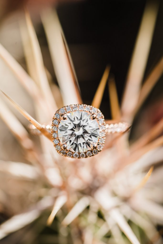 Desert Botanical Gardens Engagement Ring Photo