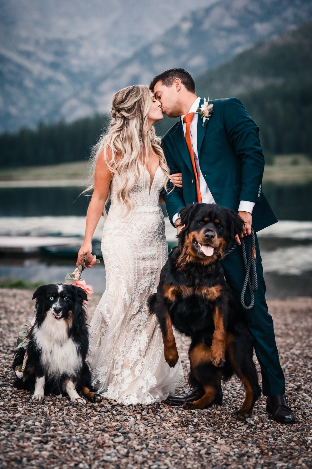 Bride and Groom kiss while their dogs jump and look at camera at Piney River Ranch